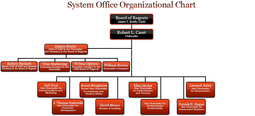 A chart describing the organizational structure of USM